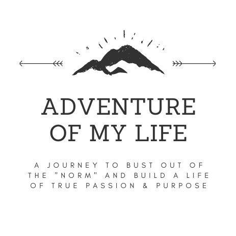 Adventure Of My Life